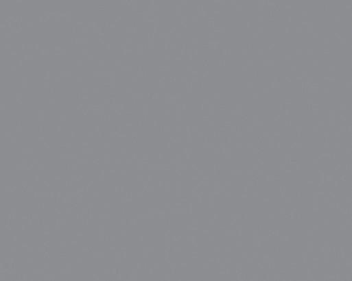 <b> СЕРЫЙ NTM 0752</b>